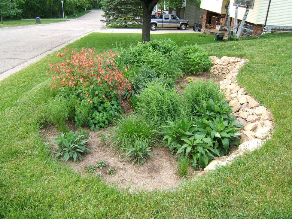 Dane County Rain Garden Workshop image