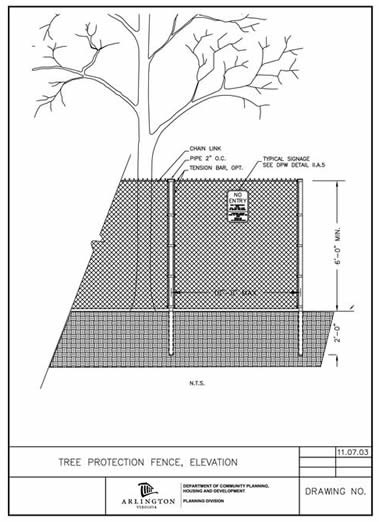 Tree Protection Image